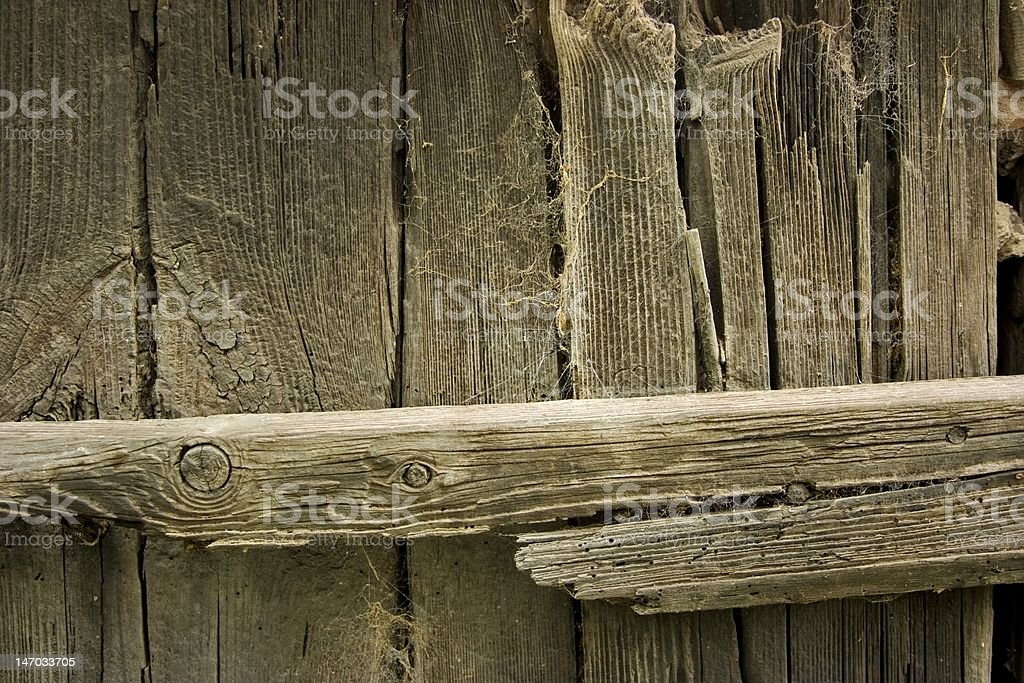 Wood and webs royalty-free stock photo