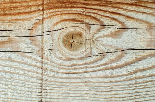 Fundo de madeira - foto de acervo