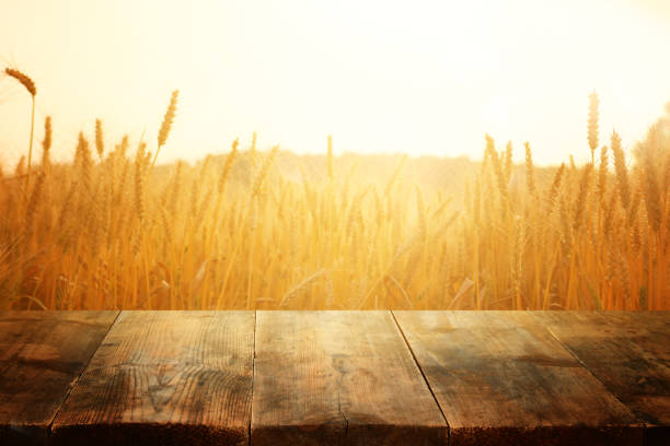 wood board table in front of field of wheat on sunset light. Ready for product display montage – zdjęcie