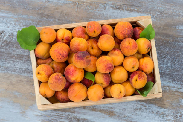 wood box with apricots on a old wooden background Top view stock photo