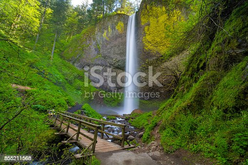 Wooden foot bridge along hiking trail by Latourell Falls in Columbia Rover Gorge Oregon