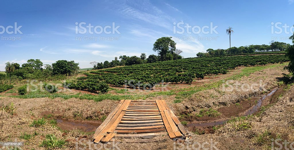 Wood bridge in the farm landscape stock photo