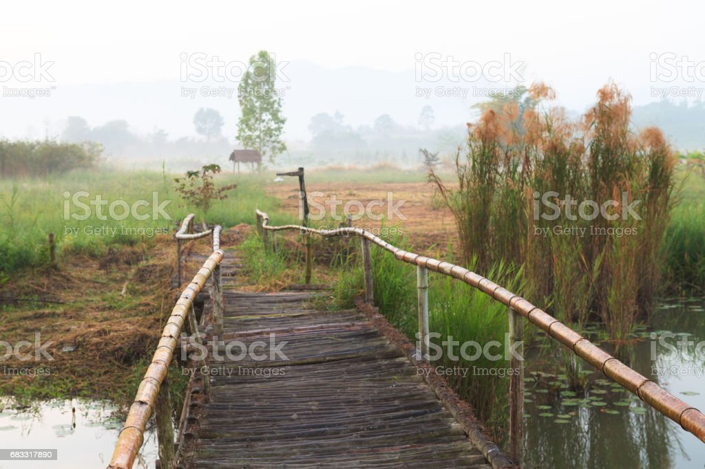 Wood bridge in the morning with fog in rural area of Thailand royalty-free stock photo