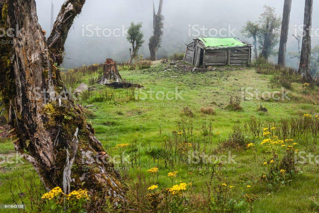 Wood cabin of Brokpa nomads in Himalayas during monsoon, Arunachal Pradesh, India. stock photo