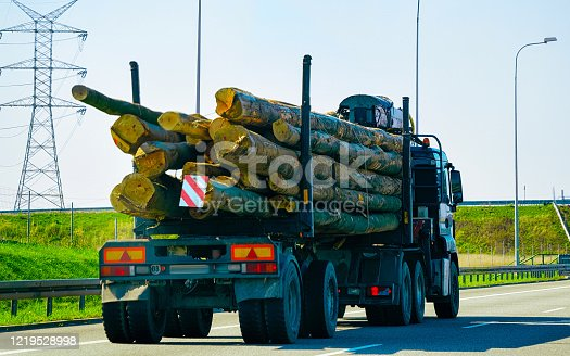 665295184 istock photo Wood carrier vessel at highway road in Poland 1219528998