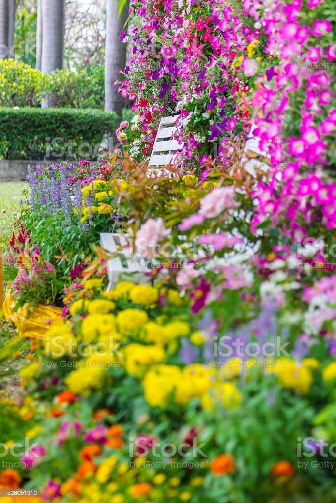 Wood chair in the flowers garden. stock photo