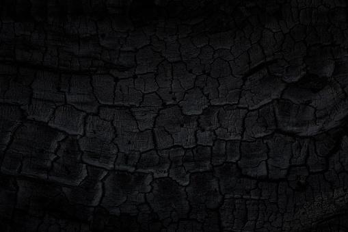 Wood charcoal texture. Burnt tree. Black coal background