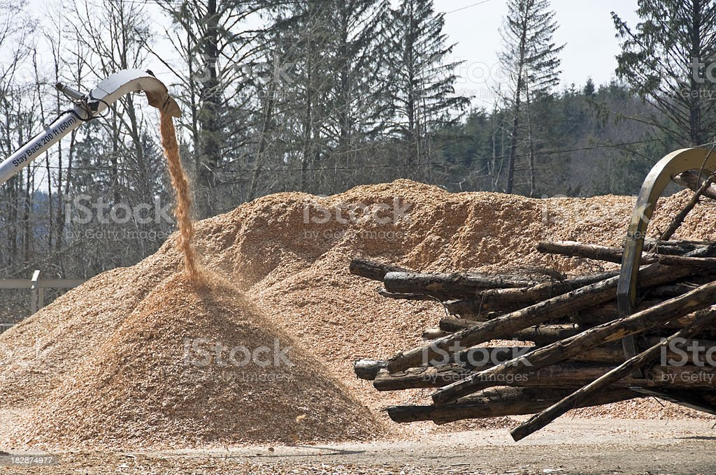 Wood chip piles and raw timber stock photo