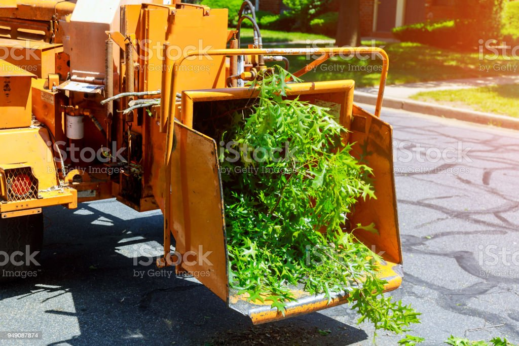 Wood chipper blowing tree branches cut A tree chipper or wood chipper is a portable machine used for reducing wood into smaller wood chips. stock photo