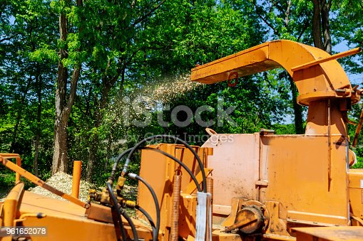 A tree chipper or wood chipper is a portable machine used for reducing wood into smaller wood chips blowing tree branches cut up into the back of a truck.