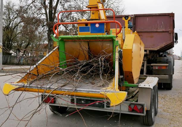 holzhäckslermaschine, die den zerfetzten wald in eine lkw-häckslermaschine freisetzt, um sie zu entfernen - häcksler stock-fotos und bilder