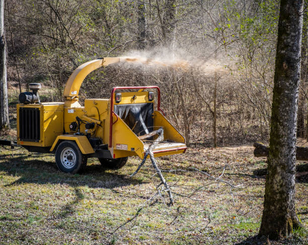 Wood Chipping Machine stock photo