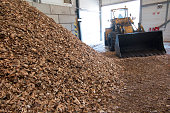 wood chips lying on the heap prepared as fuel for the biomass boiler