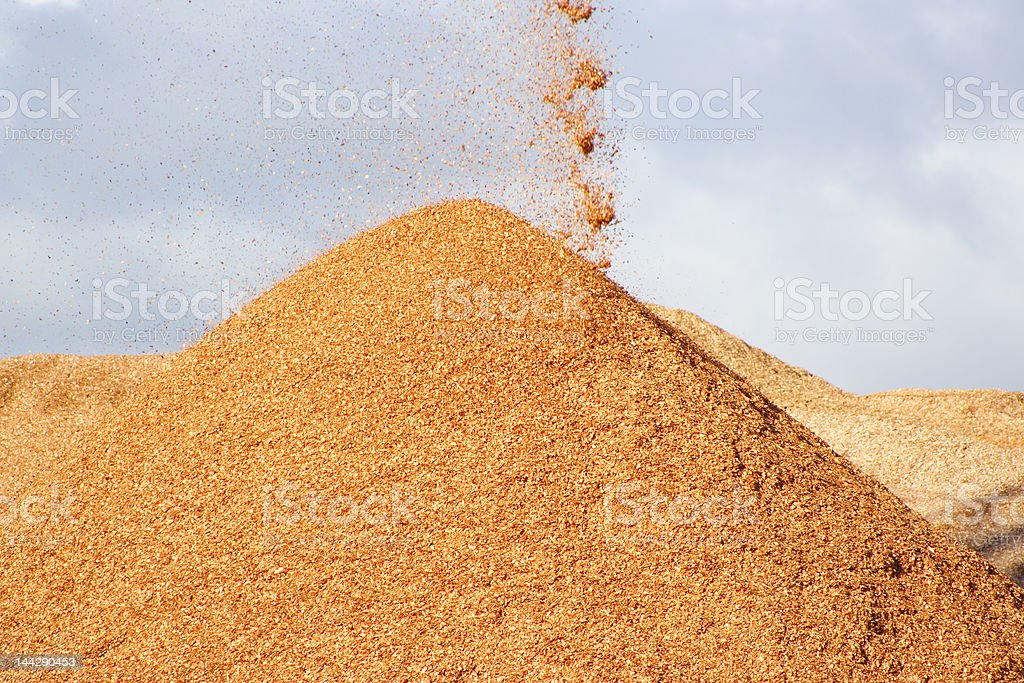 Wood chips royalty-free stock photo