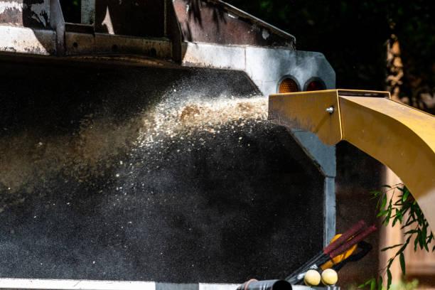 hackschnitzel schießen aus chipper - häcksler stock-fotos und bilder
