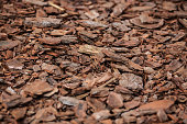Wood chips stacked on the ground in the wood factory