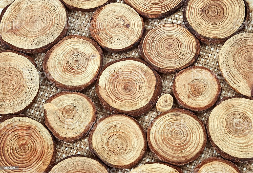 Wood circles with annual rings royalty-free stock photo