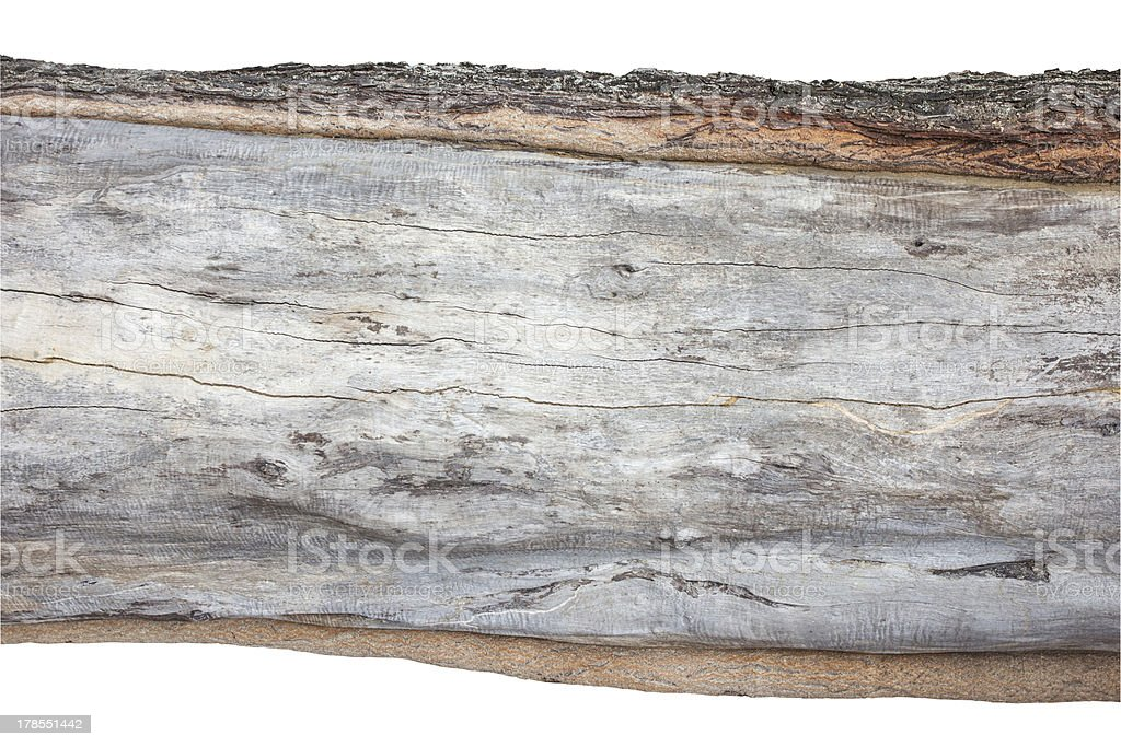 wood cross section, backgrounds bark and texture royalty-free stock photo