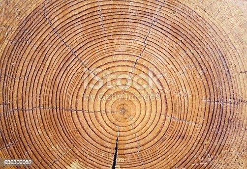 istock Wood cut background 636306082