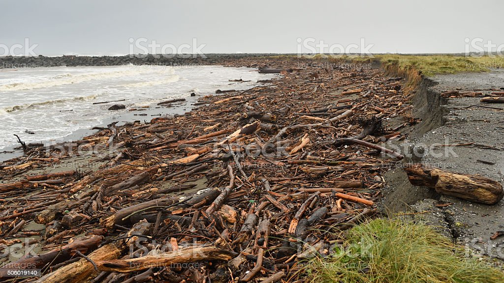 wood debris washed up on beach in stormy weather stock photo