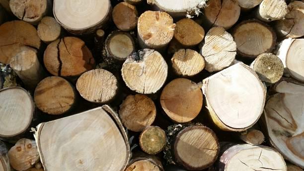 holz endet - jeff wood stock-fotos und bilder