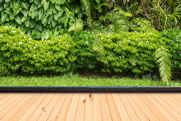 Wood flooring in a green plant garden decorative stock photo