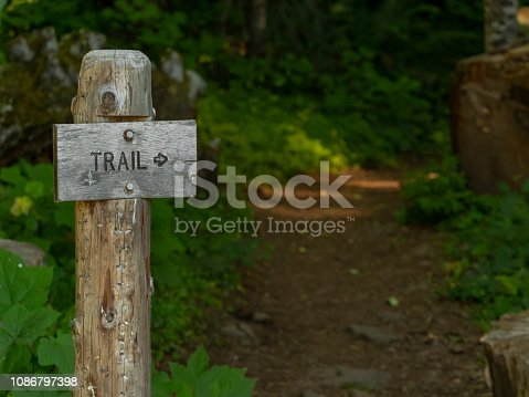 A Forest trail in Western Oregon among large trees and lush plant growth. A wood sign with arrow pointing to the start of trail.