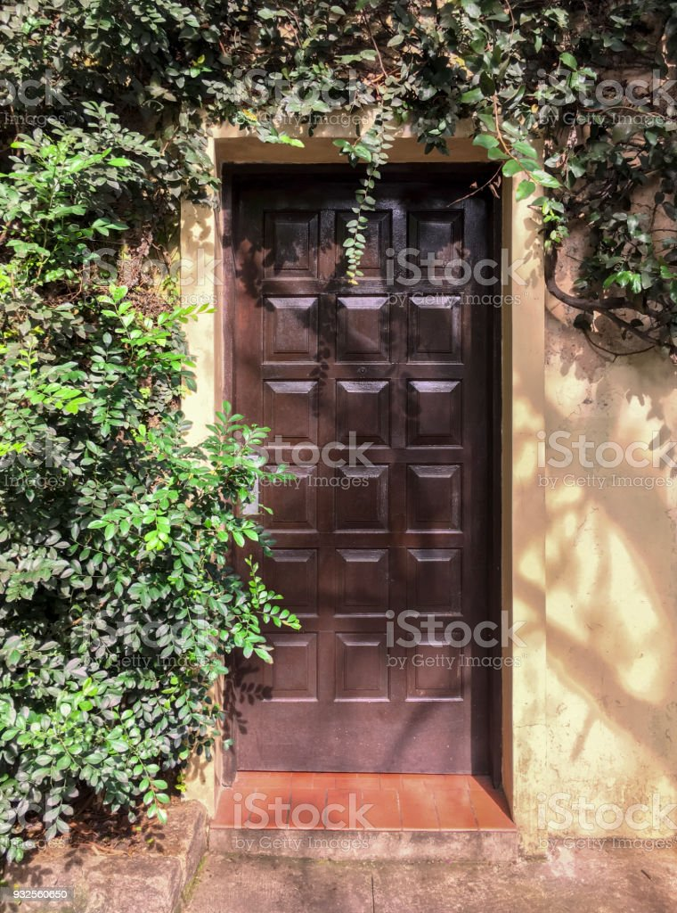 Wood Front Door With Vegetation Frame Stock Photo   Download ...