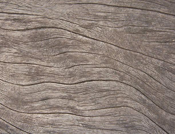 wood grain - jeff wood stock-fotos und bilder