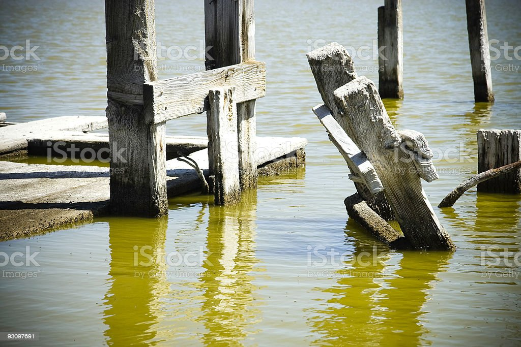 Wood in the Bay royalty-free stock photo