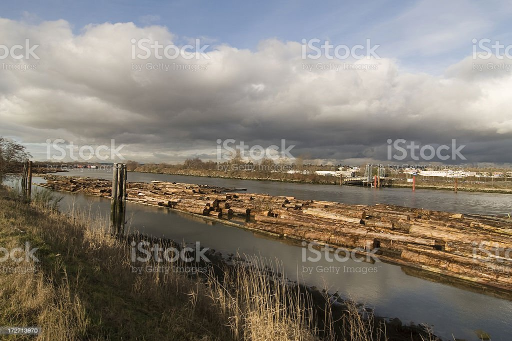 Wood in water royalty-free stock photo