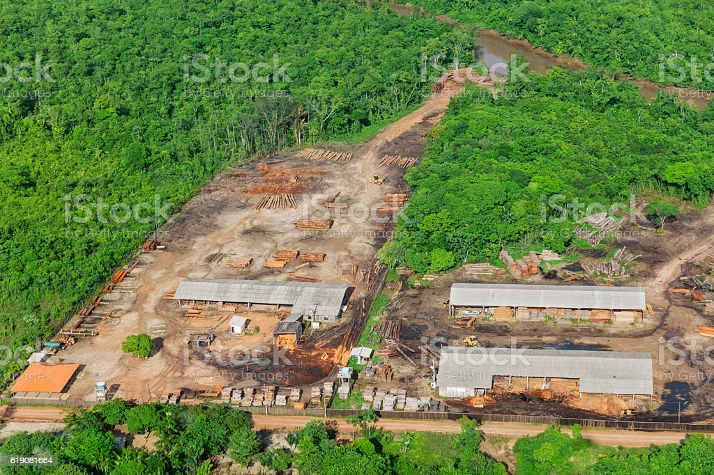 Wood industry in the Amazon stock photo