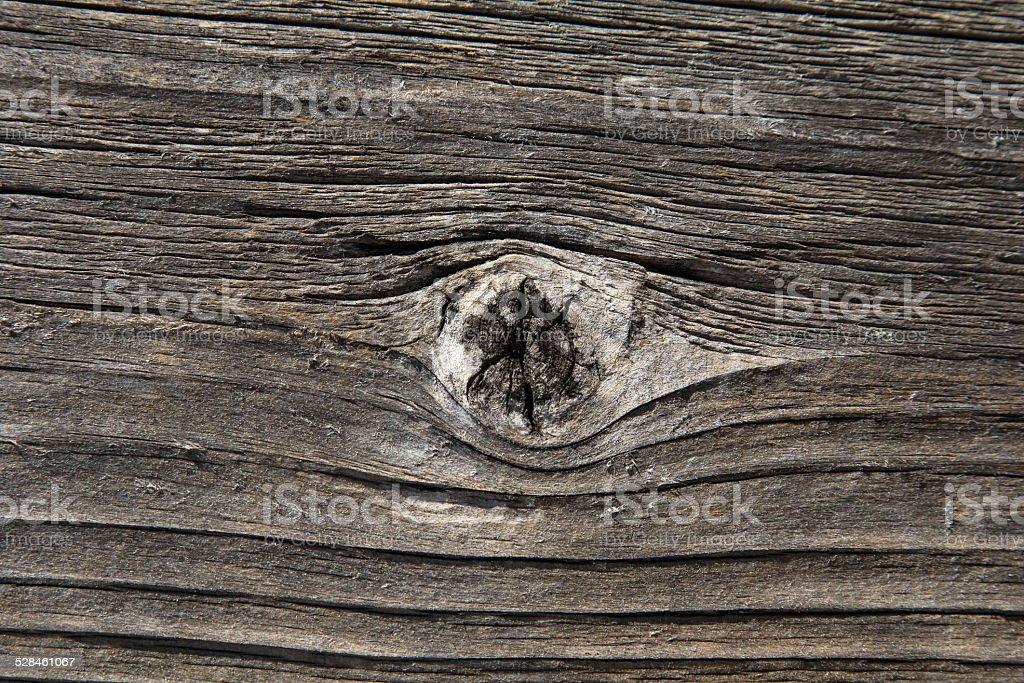 wood knot stock photo