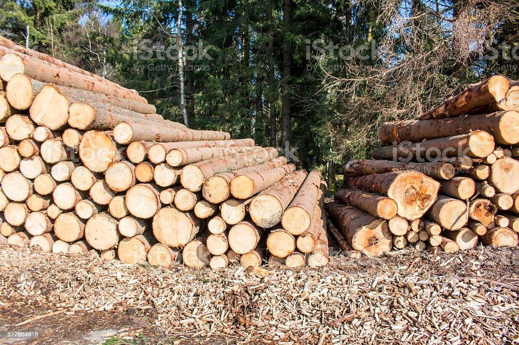 wood logs background stock photo