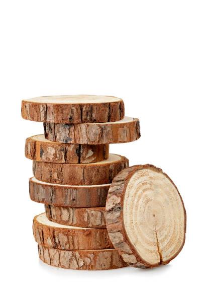 bûches en bois - branche partie photos et images de collection