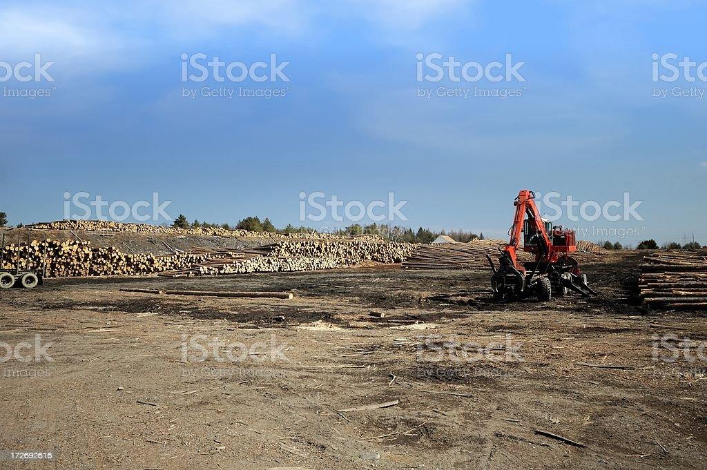 wood lot royalty-free stock photo