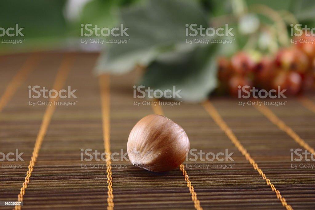 Wood nut royalty-free stock photo