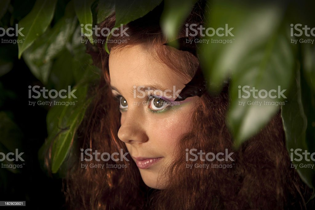 Wood nymph royalty-free stock photo