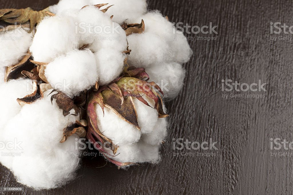 wood on the cotton stock photo