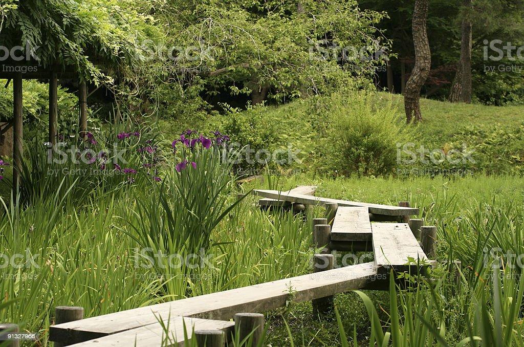 chemin en bois iris domaine du jardin japonais photos et plus d 39 images de aiguille rocheuse. Black Bedroom Furniture Sets. Home Design Ideas