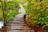 Wood path in the Plitvice national park in autumn ,CroatiaWood path in the Plitvice national park in autumn ,Croatia