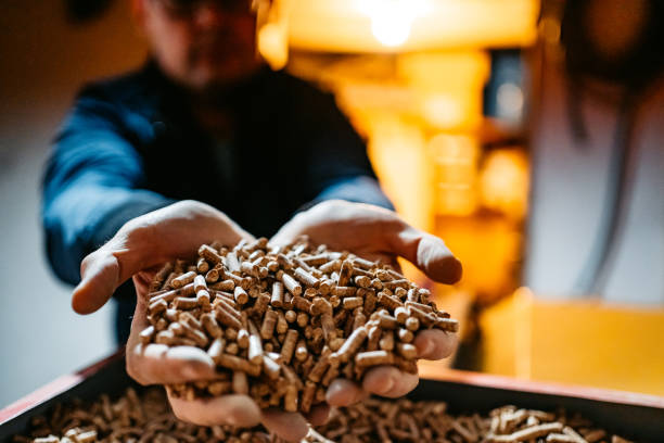 Wood pellets in hands stock photo