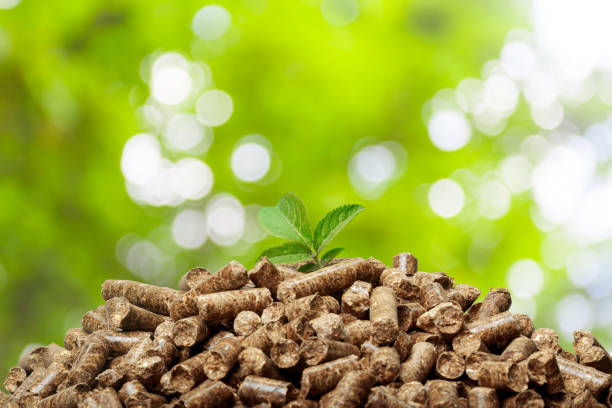 Wood pellets on a green background. Biofuels. Wood pellets on a green background. Biofuels. biofuel stock pictures, royalty-free photos & images