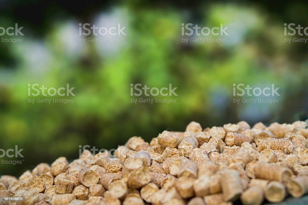 Wood pellets on a green nature background. Biofuels. stock photo