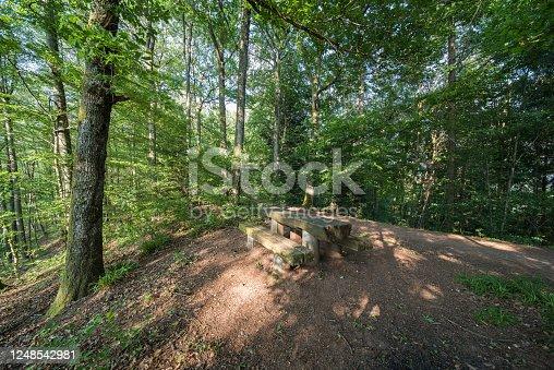 1200139538 istock photo wood 1248542981