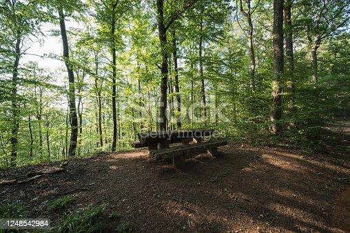 1200139538 istock photo wood 1248542984