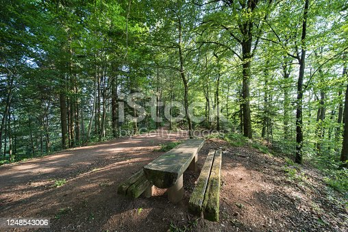 1200139538 istock photo wood 1248543006