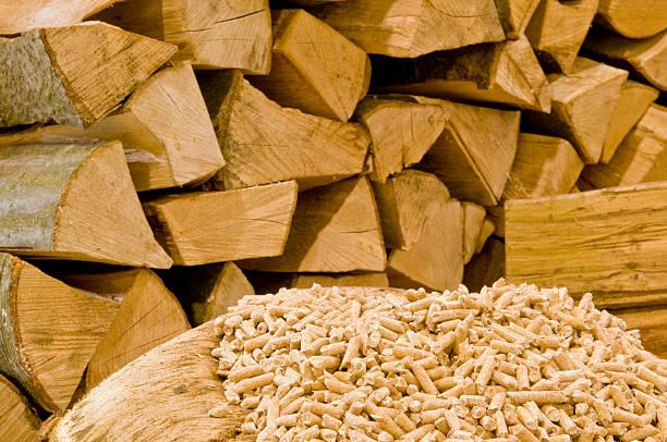 Wood – Foto
