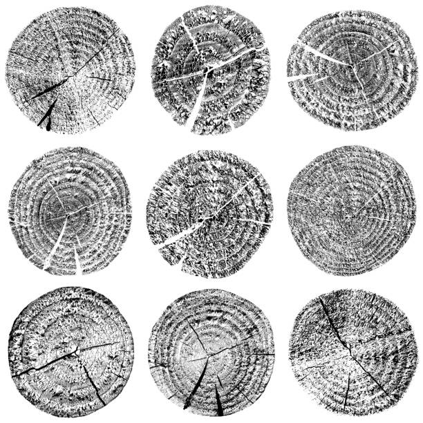 wood - rubber stamp texture stock photos and pictures