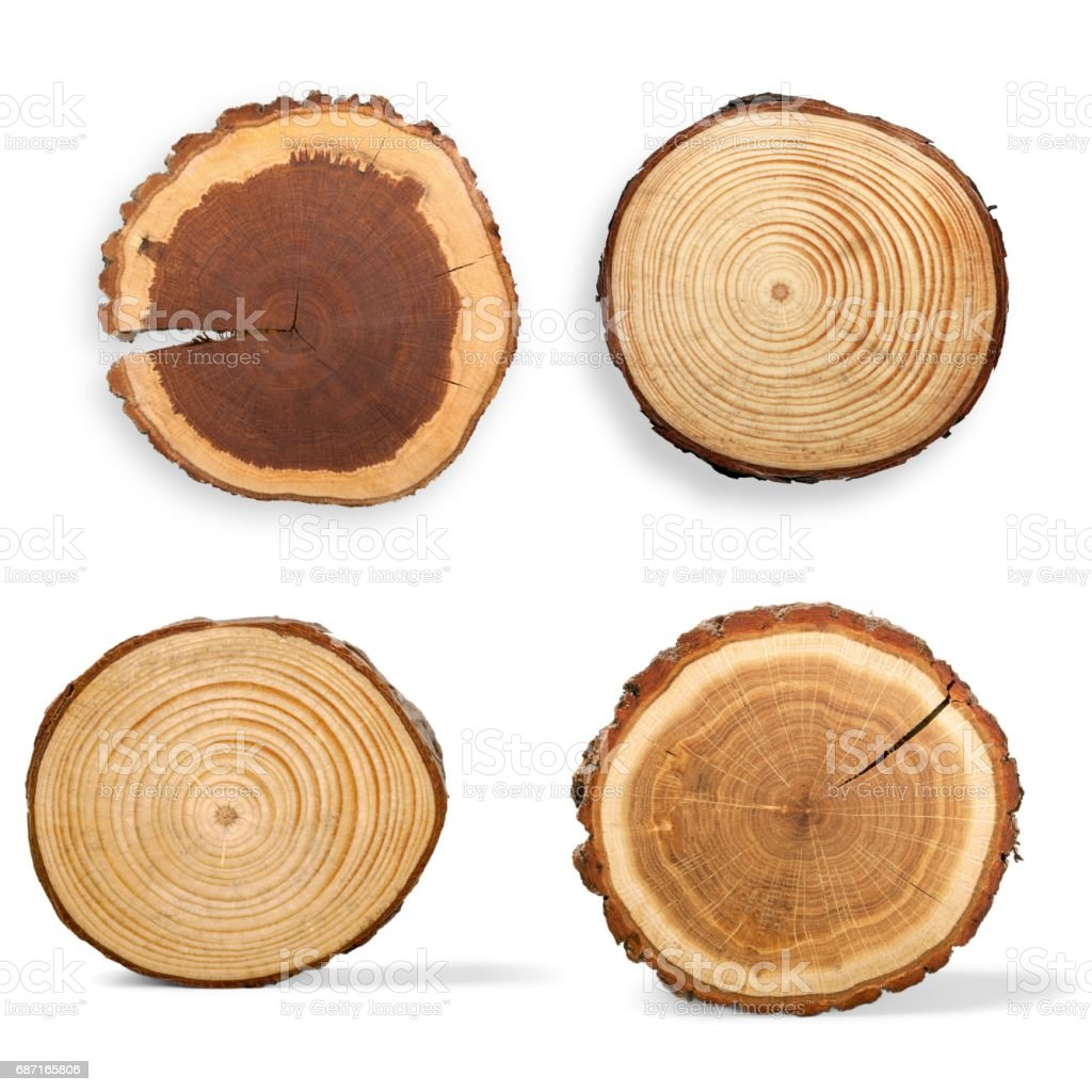 Wood. stock photo